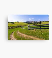 country road through grassy rural hillside Canvas Print