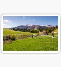 beautiful rural scenery in springtime Sticker