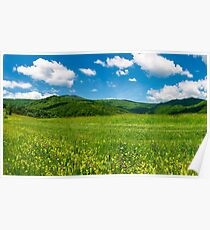 beautiful landscape with meadow in mountains Poster