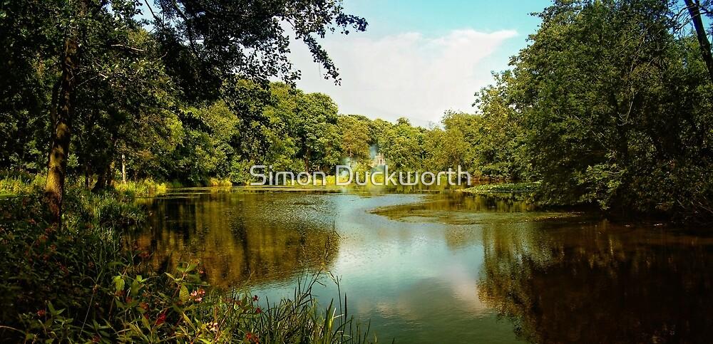 Renishaw Pond by Simon Duckworth