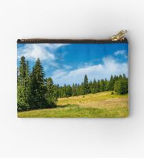 spruce forest on a grassy meadow Studio Pouch