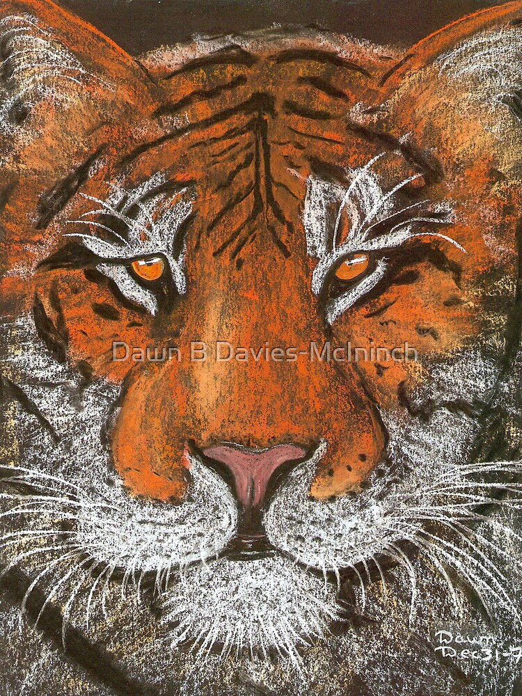 Night Tiger by Dawn B Davies-McIninch