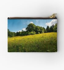 spot of light on a meadow among forest Studio Pouch