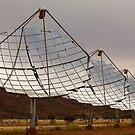 Solar Array by Richard  Windeyer