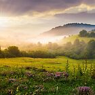 gorgeous sunrise in Carpathian mountains by mike-pellinni