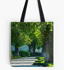 alley with old chestnut trees Tote Bag