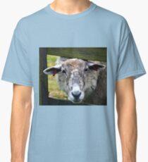 A Very Endearing Ewe.......... Classic T-Shirt