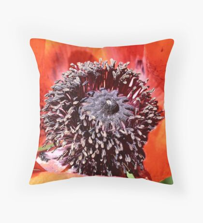 Opiated Centering Throw Pillow