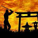 Ninja on the attack by Okeesworld