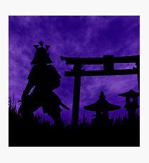 Gate Guardian  Photographic Print