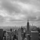 New York Black and White by Michelle McConnell