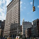 Flatiron Building, New York City by Michelle McConnell