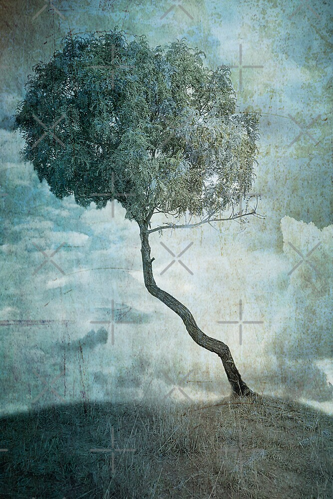 Sentinel by Mel Brackstone