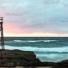 Sunrise at Redhead Beach - 1 by Margo Humphries