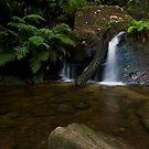 Feel Like a Swim - Blue Mountains NP, NSW by Malcolm Katon