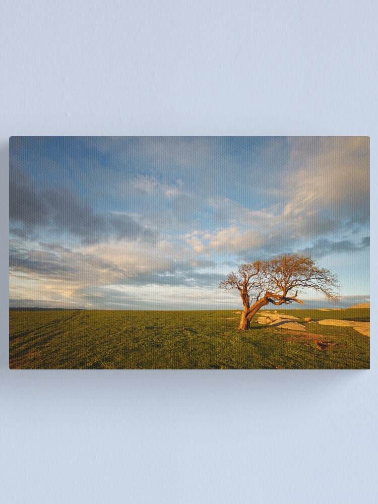 Alternate view of The Geelong Landscape Canvas Print