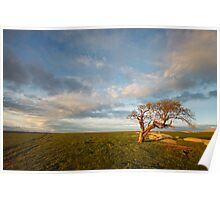 The Geelong Landscape Poster