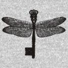 The Dragonfly Key by Aimee Stewart