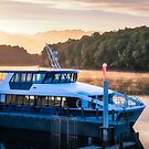 Sunrise Cruise to Doubtful Sound by Danielasphotos