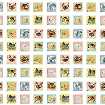 Travelling Kittens by JuliaStringer