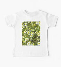 Photo of camomile flowers Baby Tee