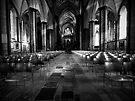 Salisbury Cathedral  by igotmeacanon