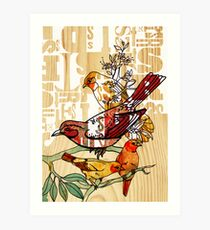 letterpress birds Art Print