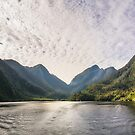 Morning Light hitting the Docks at Doubtful Sound in New Zealand by Danielasphotos