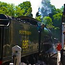 Southern No.825 by Trevor Kersley