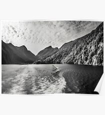 Morning Cruise at Doubtful Sound in black and white Poster