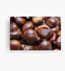 Sweet chestnuts Canvas Print