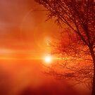 Red Zen by Mark W.  Law
