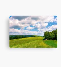 agricultural fields on hills Canvas Print