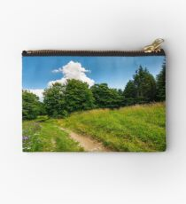 footpath trough the glade in forest Studio Pouch