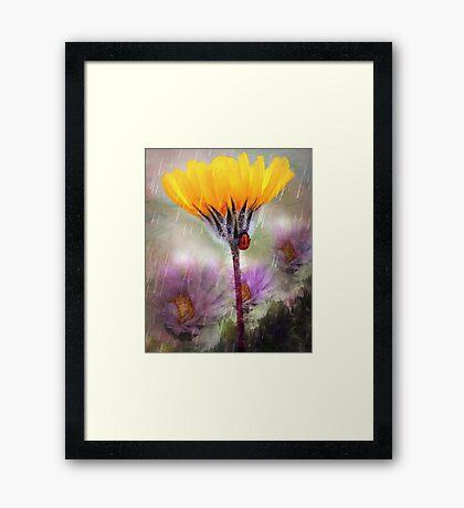 Ladybug Umbrella Framed Print