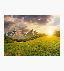 forest on grassy hillside in tatras at sunset Photographic Print
