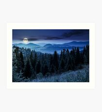 spruce forest in mountains at night Art Print