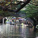 The River Walk by Olivia Plasencia
