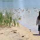 A Walk With The Gulls by AuntieJ