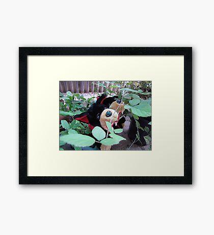 RnR gardening in blackberries Framed Print