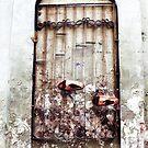 2009-06-11 [_P1220804 _XnView _2] by Juan Antonio Zamarripa [Esqueda]