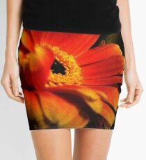 Gerber Portrait Mini Skirt