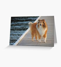 Focussed Greeting Card