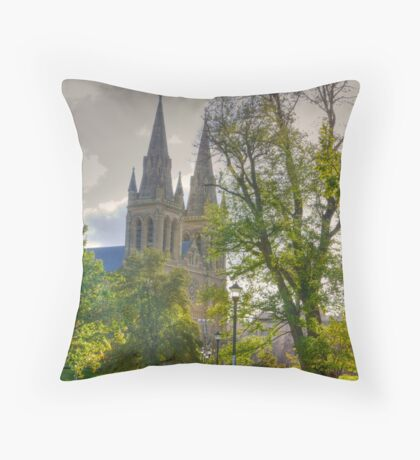 St Peter's Cathedral, Adelaide Throw Pillow