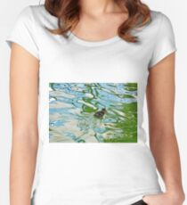 Mallard duckling swimming in a pond Women's Fitted Scoop T-Shirt