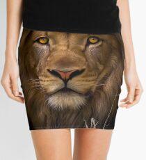 Passive Mini Skirt