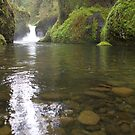 Punch Bowl Falls by Christopher  Boswell