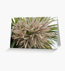 Palm Blossom Greeting Card