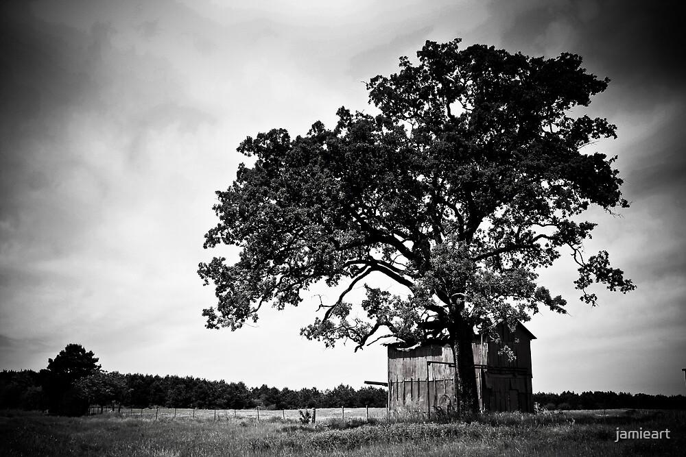 Countryside by jamieart