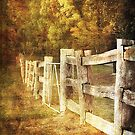Country Charm by Karen Scrimes